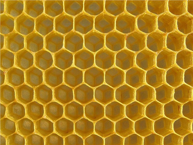 фото пчеловода