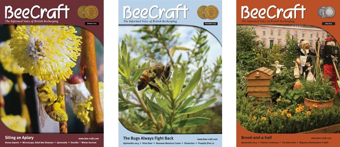 Журнал BeeCraft
