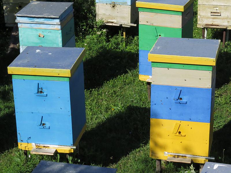 Двухкорпусное содержание пчёл