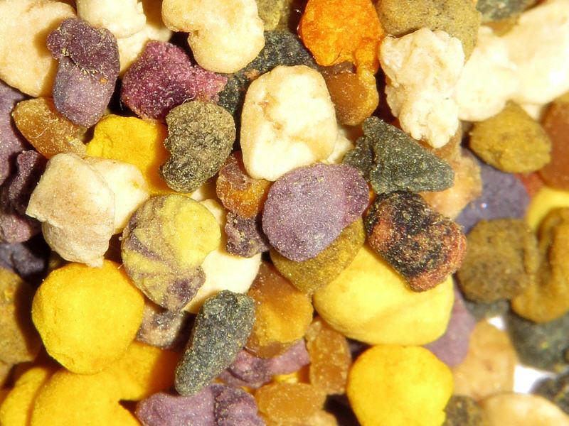 Разноцветная пыльца-обножка