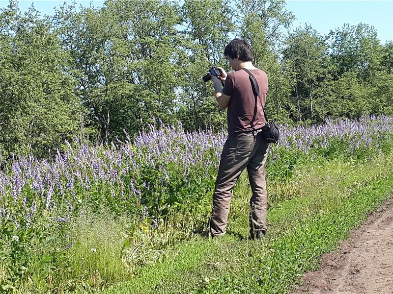 Ильшат Асмандияров фотографирует пчёл