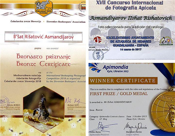 Достижения и награды «Блога пчеловода Ильшата Асмандиярова»