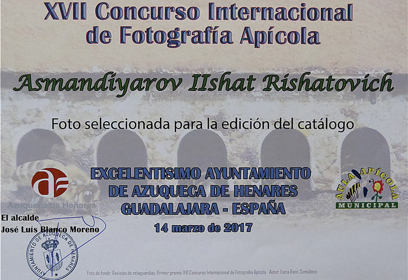 XVII International Apiculture Photography Contest