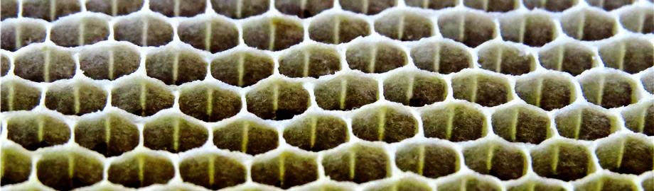 Блог пчеловода Ильшата Асмандиярова - Онлайн дневник пасечника: фотографии, советы, мысли, наблюдения