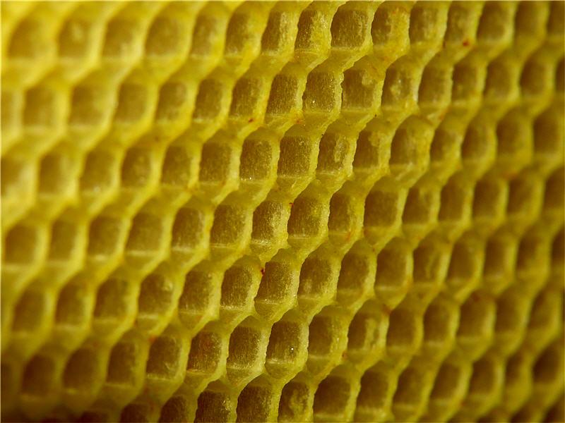 Описание особенностей плавления пчелиного воска в домашних условиях